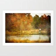 Duck Pond Art Print