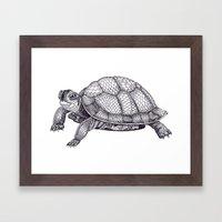 Turtle Pattern Framed Art Print