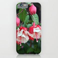 Fuchsia iPhone 6s Slim Case