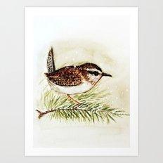 wren - watercolor  Art Print