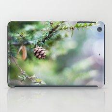 Little Cone iPad Case