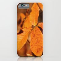 iPhone & iPod Case featuring Autumn Leaves by Captive Images Photography