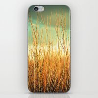Wind In The Willows iPhone & iPod Skin
