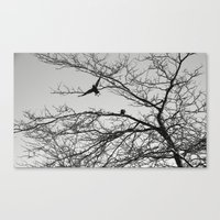 two crows Canvas Print