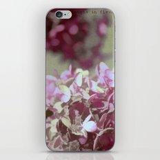 Hydrangeas No. 4 iPhone & iPod Skin