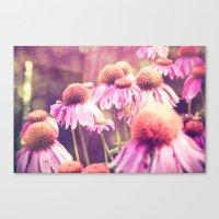 Midsummer Night's Dream - color version Canvas Print