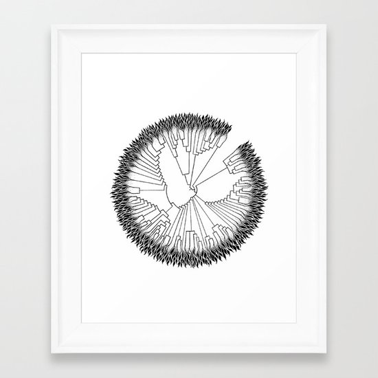 Cladogram Framed Art Print