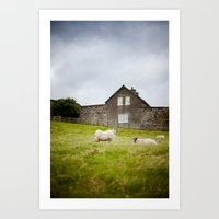 Sheep Blown By The Wind Art Print