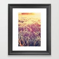 Frosty Sunrise Framed Art Print