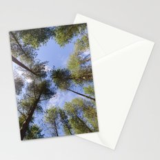 Corsican Pine Canopy Stationery Cards