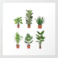 Watercolor Plant Collection Art Print