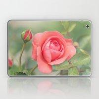 Summer Rose Laptop & iPad Skin