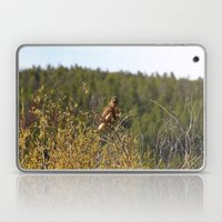 Red-tailed Hawk In The T… Laptop & iPad Skin