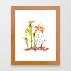 My Pitcher Plant Bog Framed Art Print