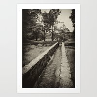 The Stream Flows Art Print
