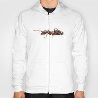 Geometric Ant Hoody