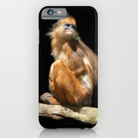 iPhone & iPod Case featuring Banded Leaf Monkey Howletts by Serenity Photography