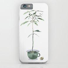 Avocado Tree iPhone 6 Slim Case
