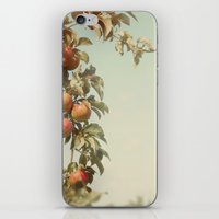 The Orchard Skies iPhone & iPod Skin