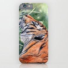 Bengal Tiger iPhone 6s Slim Case