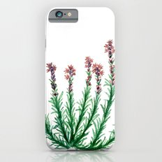 Heller's Blazing Star iPhone 6 Slim Case