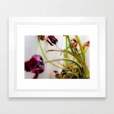 Seasons Past Framed Art Print