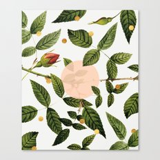 Leaves + Dots Canvas Print