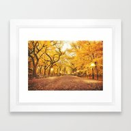 Framed Art Print featuring New York City Autumn by Vivienne Gucwa