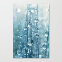 Blue Grass drops II Canvas Print