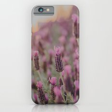 Lavender Stories iPhone 6 Slim Case