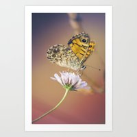 Butterfly Pink And Yello… Art Print