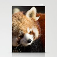 Ailurus Fulgens Stationery Cards