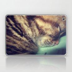 Sleepy Kitten Laptop & iPad Skin