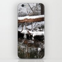 Winter's Light iPhone & iPod Skin