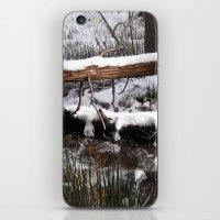 Winter's Light iPhone & iPod Skin