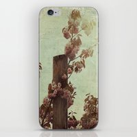 Faded Blossoms iPhone & iPod Skin