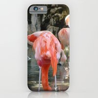 Pink Flamingos iPhone 6 Slim Case