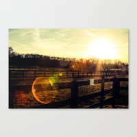Sun Salutation  Canvas Print