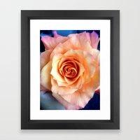 A Rose For Rosie Framed Art Print