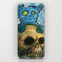 Blue Cat on a Skull iPhone & iPod Skin