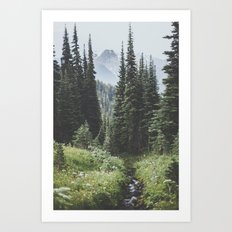 Through the Woods Art Print