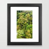 Itsukushima Forest Framed Art Print