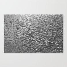 Ambling River Canvas Print