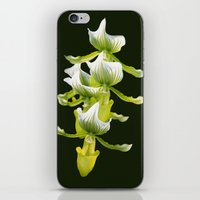 Green Orchid iPhone & iPod Skin
