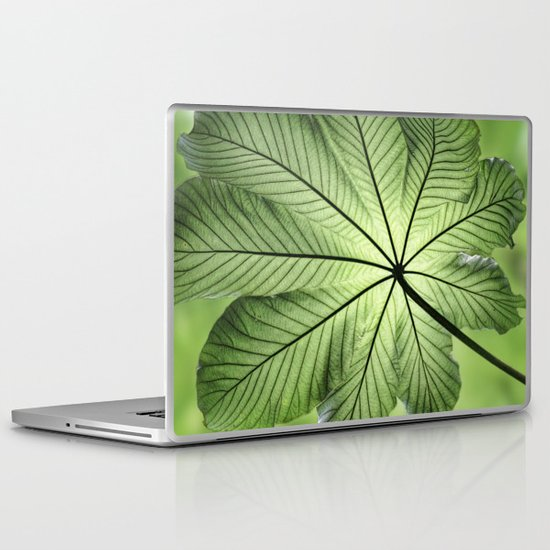 Canopy Laptop & iPad Skin