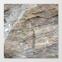 Cliffort Canvas Print