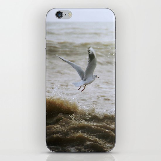 Of wind and waves and flight... iPhone & iPod Skin