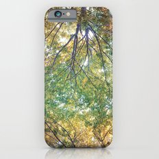 forest 014 Slim Case iPhone 6s