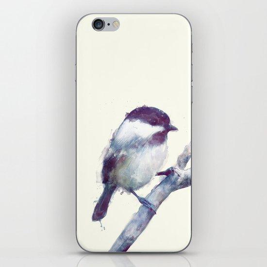 Bird // Trust iPhone & iPod Skin