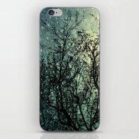 Starry Sky iPhone & iPod Skin